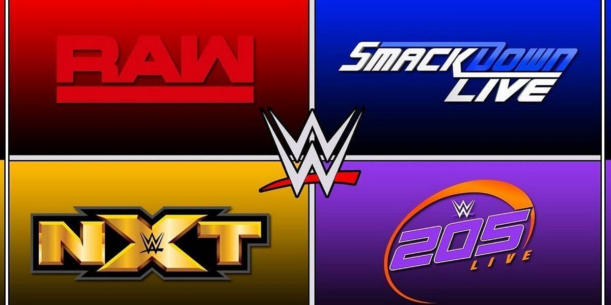 WWE: Si valuta di creare la Wrestling World Cup *RUMOR*