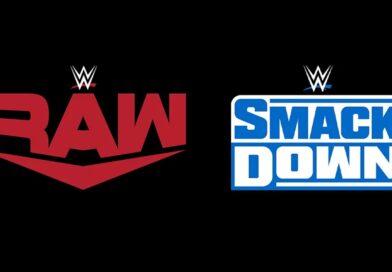WWE: Presto si avrà un roster unico?